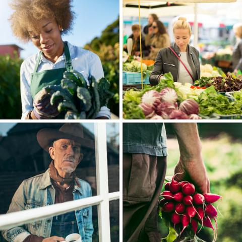 Farmer Gardener Consumer Collage Square